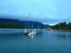 Tofino boat view