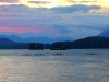 Paddlers at sunset tofino